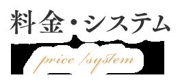system-3